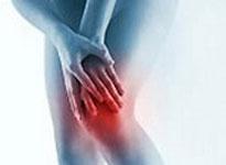 Настойка эвкалипта значительно уменьшит болевые ощущения в суставах.