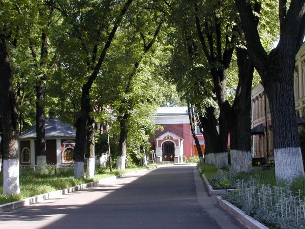 Донской монастырь, некрополь.