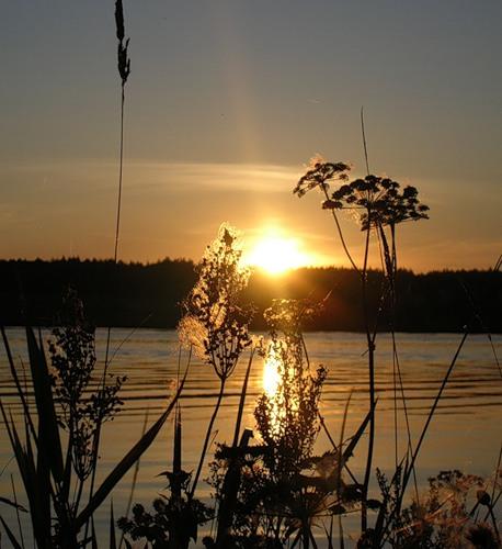"""Фото """"Печально-долгий взгляд осеннего заката..."""" автора Татьяны"""
