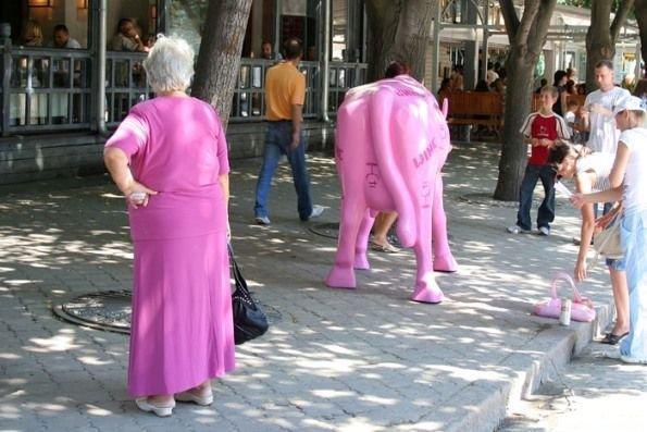 В бой идут одни старики (17 фото)