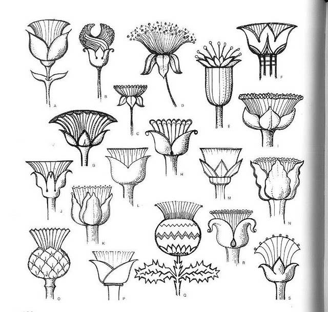 Шаблоны цветов рисунки цветов