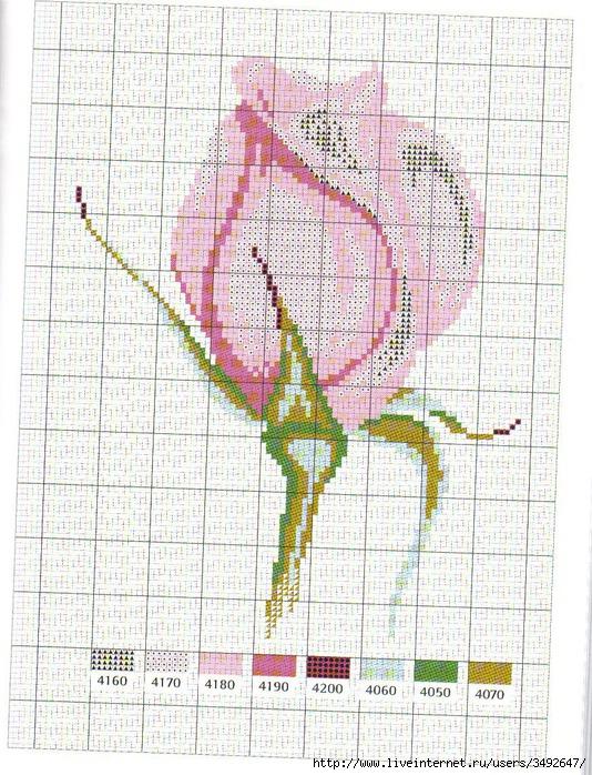Схема вышивки розовых цветов 510