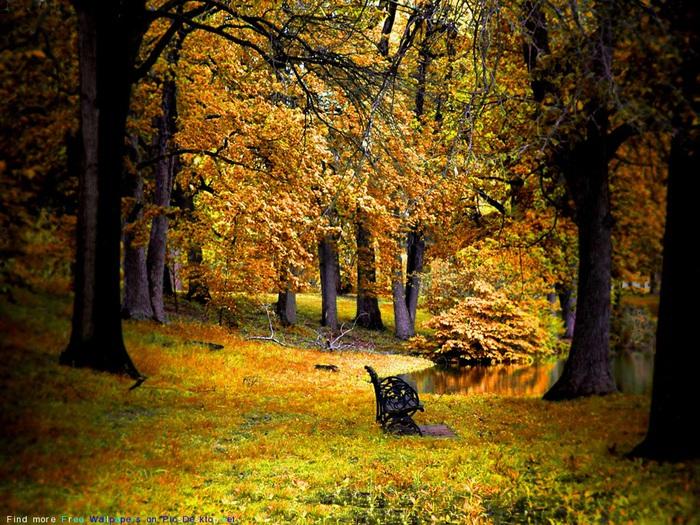 http://img0.liveinternet.ru/images/attach/c/1/63/488/63488604_1283354266_UKUK.jpg