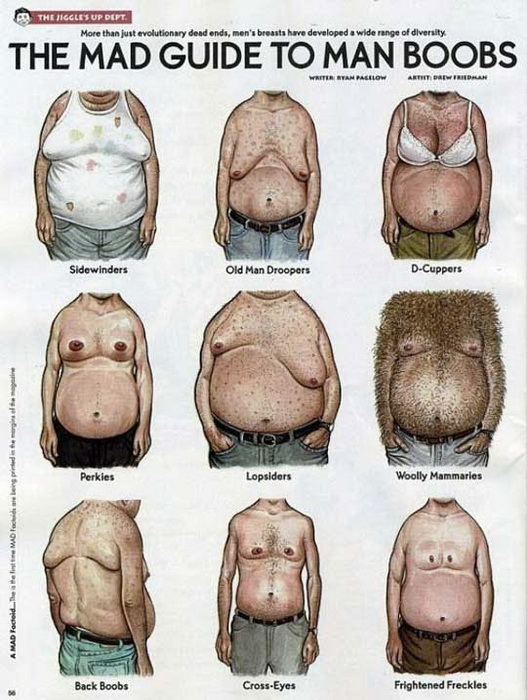 типы женской груди фото