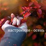 http://img0.liveinternet.ru/images/attach/c/1/63/523/63523637_f10.jpg