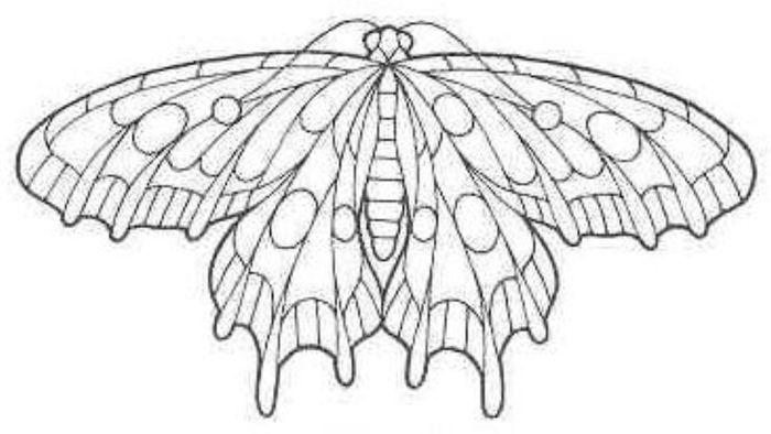 Кружевная бабочка из пластиковой бутылки.  Материалы: * Бумага, линейка, карандаш, ножницы, фломастер...