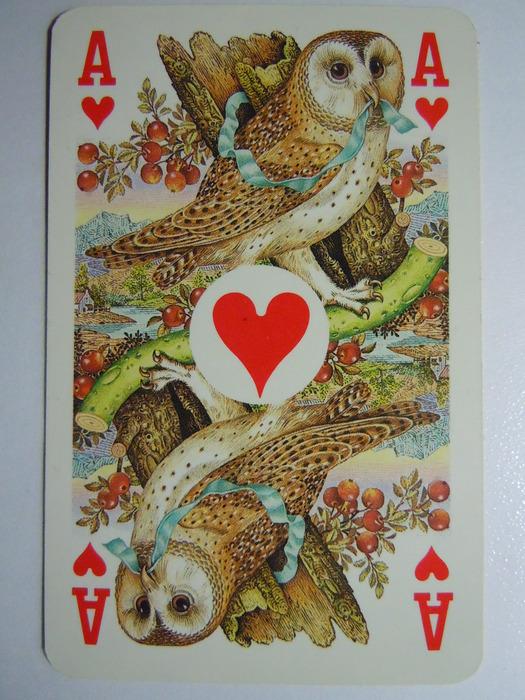 Колода из 52 карт плюс 2 джокера и карта с правилами для бриджа.  Н - король.  Голландские абревиатуры.