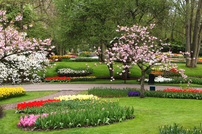 flower-garden-11281366700rMkE.jpg (изображение «JPEG», 1280x853 пикселов) - Масштабированное (65%) (700x466, 890Kb)