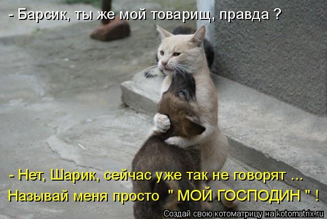 3400156_892130 (640x428, 48Kb)