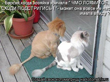 3400156_727779 (450x337, 41Kb)