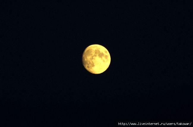 Луна/1413032_IMGP6035 (650x428, 37Kb)