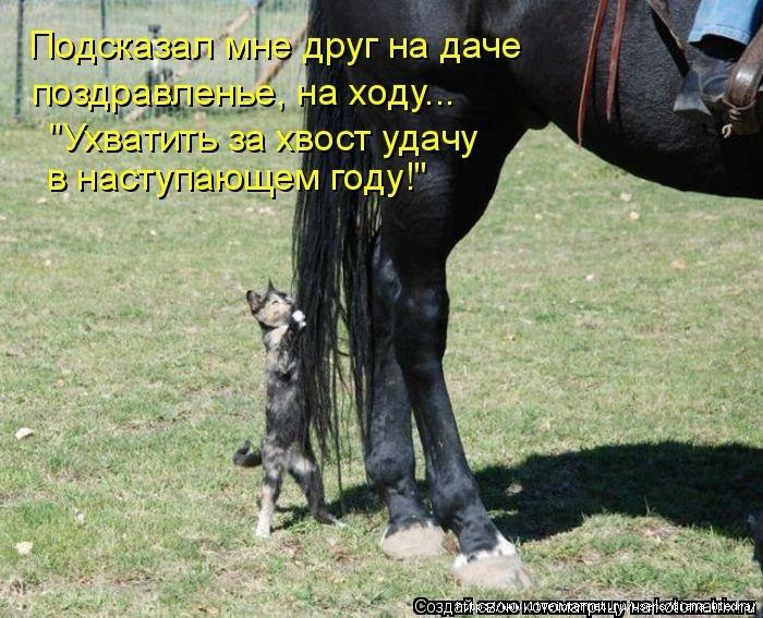 proxy.imgsmail.ru (700x567, 273Kb)