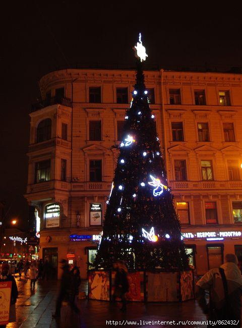 Новый год. Петербург./1413032_IMGP0119 (480x650, 140Kb)