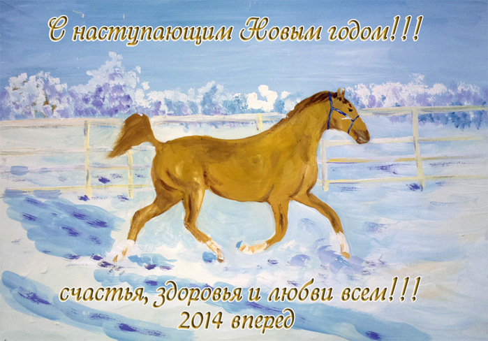 2013-12-27-4457 (700x488, 150Kb)