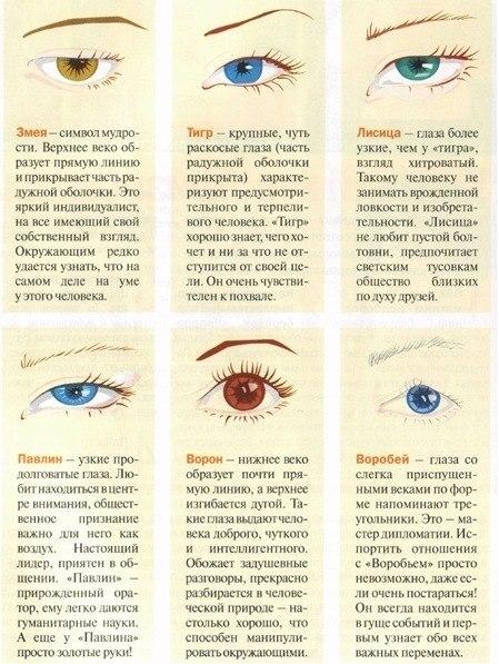 eyes (449x597, 305Kb)