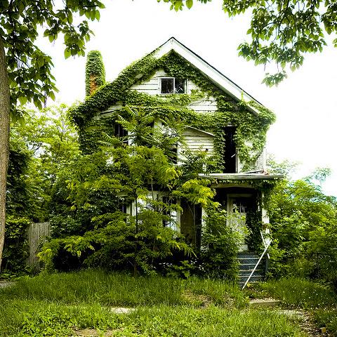 5477271_housesgonewild_01 (480x480, 188Kb)