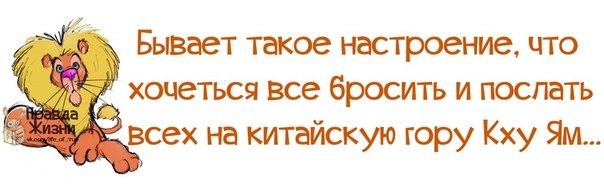 1388604792_frazochki-5 (604x191, 78Kb)
