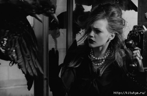 birds-peter-lindbergh-10-500x327 (500x327, 64Kb)