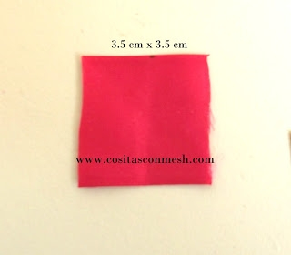 DSCF2728 (320x280, 28Kb)