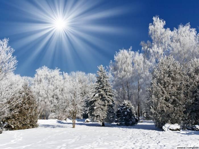 зимняя картина 1 (700x525, 285Kb)