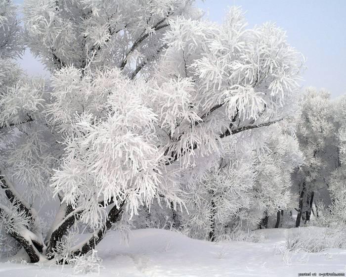 зимняя картина 2 (700x560, 293Kb)