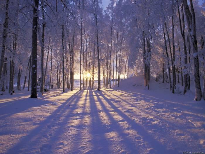 зимняя картина 6 (700x525, 322Kb)