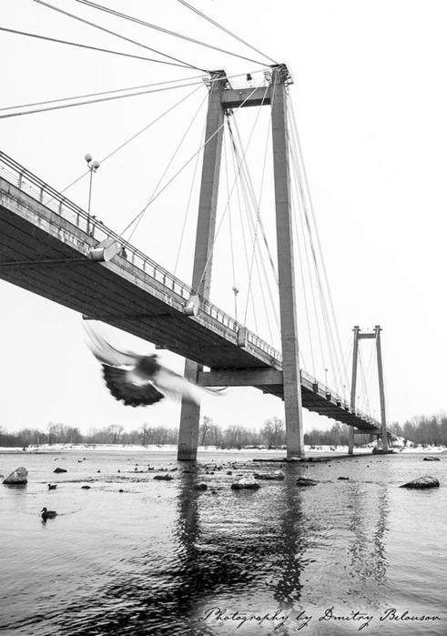 Виноградовский пешеходный мост, Красноярск/5512547_35394_original (491x700, 89Kb)
