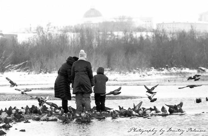 Люди и птицы/5512547_35764_900 (700x457, 84Kb)