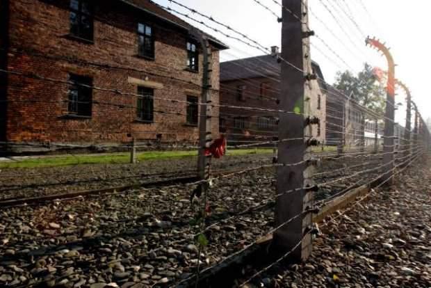 z6565812Q,Auschwitz-Birkenau (620x414, 48Kb)