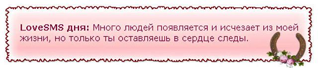 2014-01-08_005250 (640x138, 45Kb)