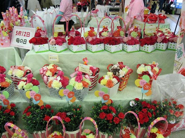 цветы японии0 (700x525, 494Kb)