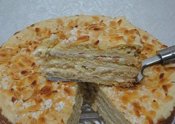 божественный тортик (604x427, 162Kb)
