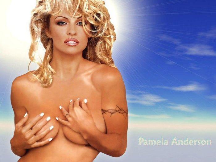 Pamela_Anderson_The_Hot_Babe_Wallpaper_020 (600x500, 47Kb)