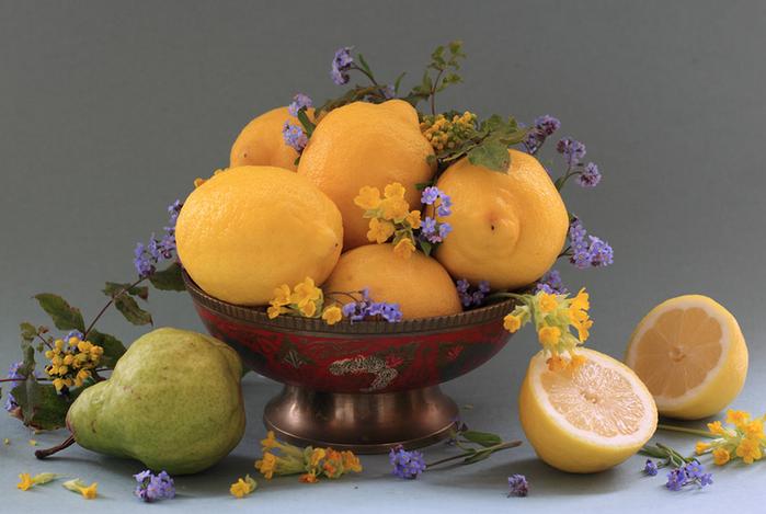 цветы и фрукты 11 (700x469, 458Kb)