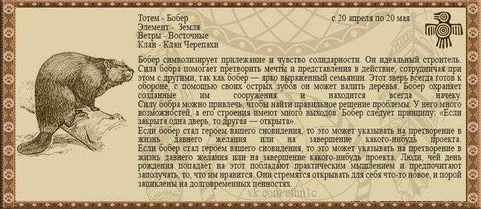 зарплат как узнать свой тотемное животное Дальнереченск-Дальнегорск отправляется
