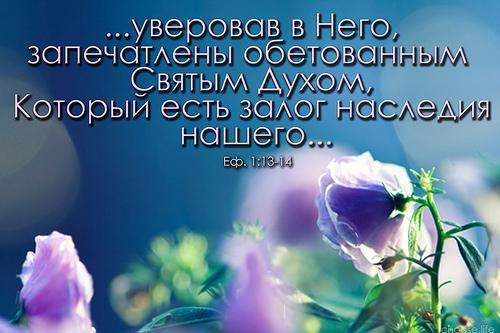 4068804_141 (500x333, 133Kb)