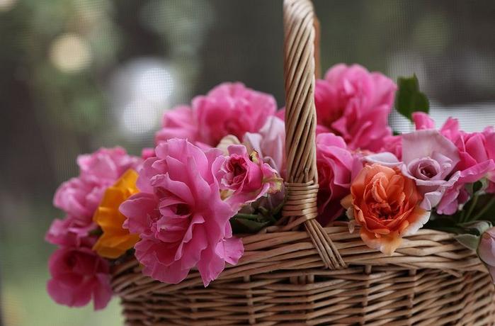 цветы и корзина 16 (700x460, 292Kb)