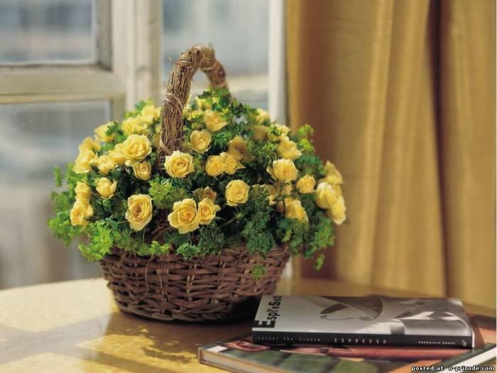 цветы и корзина 18 (700x525, 241Kb)
