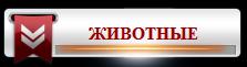 ��������� � ��������. ������ ���� �������   /3996605_15_JIVOTNIE (223x61, 11Kb)