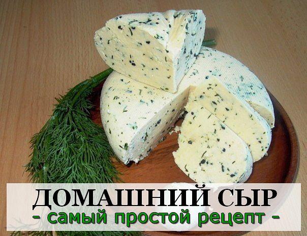Сыр из сметаны в домашних условиях рецепт с фото