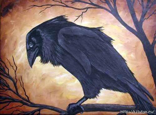 raven_21 (500x371, 103Kb)