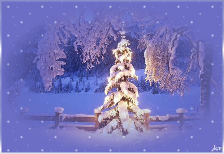 В-зимнем-лесу (450x309, 196Kb)