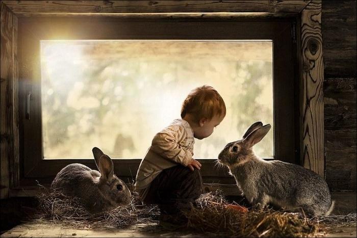 1389896526_boy-w-animals-002 (700x467, 234Kb)