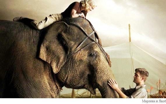 Water-for-Elephants-review_2 (570x360, 115Kb)