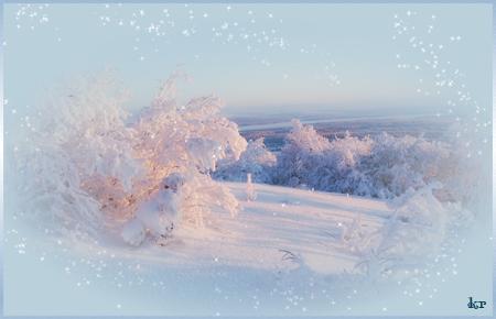 Пушистая-зима (450x290, 170Kb)