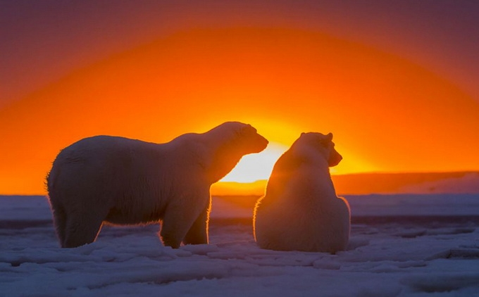 солнечный закат фото (680x422, 119Kb)