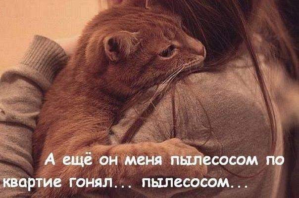 5053532_on_menya___ (604x401, 204Kb)