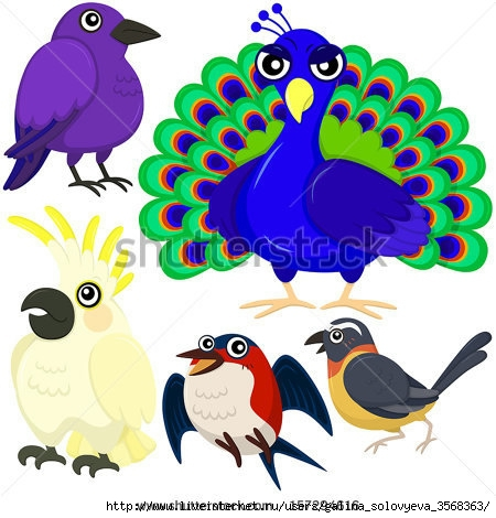 stock-vector-five-colorful-cute-birds-with-white-background-157294616 (450x470, 138Kb)