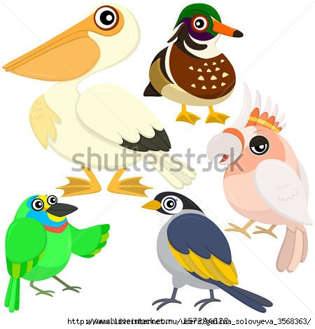 stock-vector-five-colorful-cute-birds-with-white-background-157294622 (450x470, 106Kb)