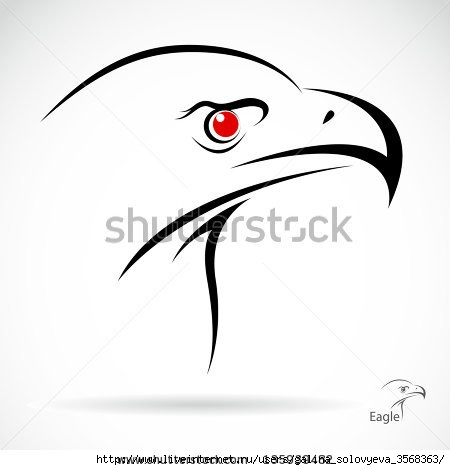 stock-vector-head-of-an-eagle-in-the-form-of-the-stylized-tattoo-135939482 (450x470, 49Kb)